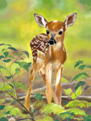 """New Life"" by Anne Rust Pearson – Painting"