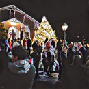"""Tree Lighting"" by Jane Ernst – Enhanced Photography"